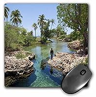 """3drose Alligator穴、ブラック川町、ジャマイカ、Caribbeanマウスパッド、8"""" x 8"""" (MP 75630_ 1)"""