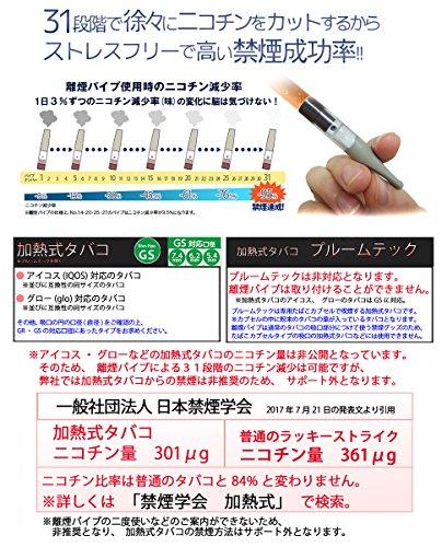 離煙パイプGR 31本セット 禁煙グッズ レギュラータイプ