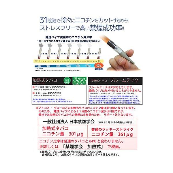離煙パイプGR 31本セット 禁煙グッズ レギ...の紹介画像6