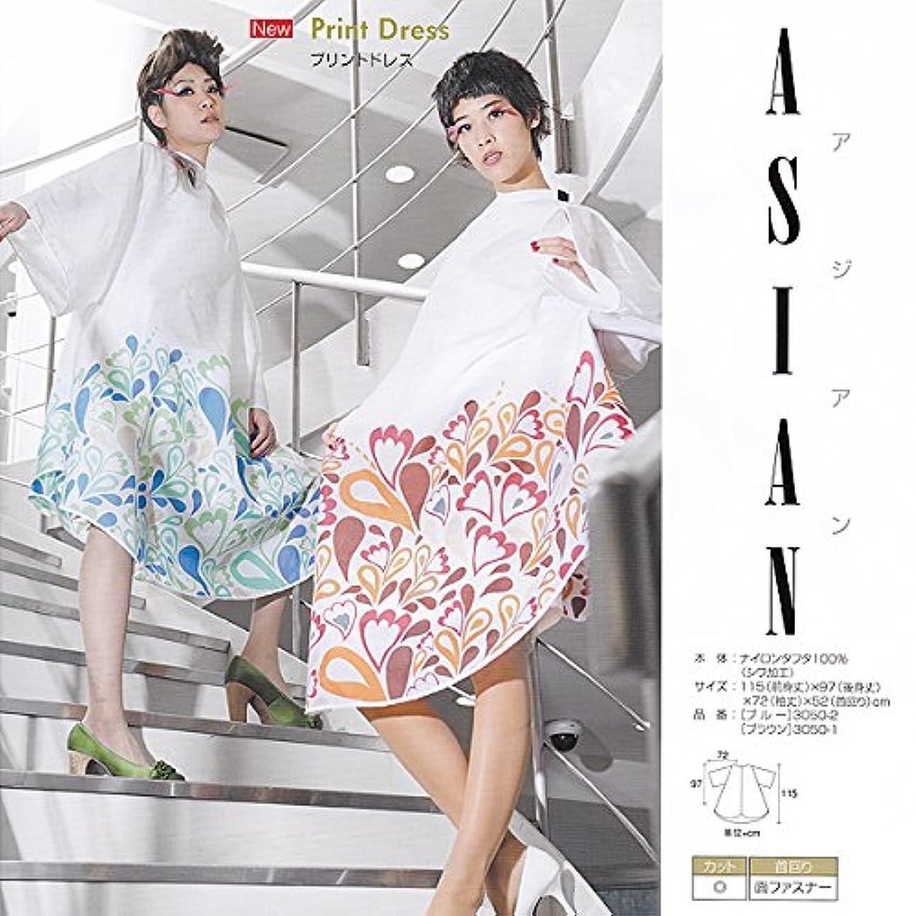 氏マニフェスト同志WAKO ASIAN アジアンプリントドレス №3050 3050-2(アジアンブルー) 115(前身丈)×97(後身丈)×72(袖丈)×52(首回リ)