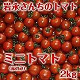 岩永さんちのとまと  ミニトマト(赤のみ) 2kg【産地直送】 [その他]