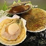 北海道小樽産 活ホタテ 3kg 殻付き15-20枚獲れたて新鮮