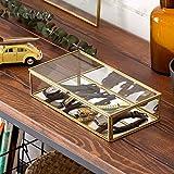 【アジア工房】 ガラスと真鍮でできたジュエリーボックス(63280) [並行輸入品]