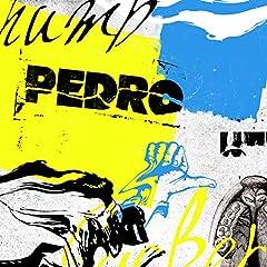 PEDRO「NOSTALGIC NOSTRADAMUS」のジャケット画像