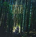 DUM SPIRO SPERO(通常1~3週間以内に発送)