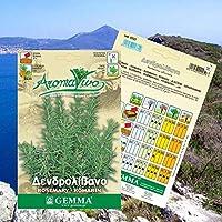 種子パッケージ:特別種子パッケージ:140 RosemarySeeds RosmarinusBest品質ガーデンSeedss