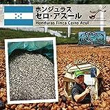 松屋珈琲 コーヒー生豆 ホンジュラス セロ アスール 1kg