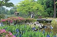 日本インポート!1000ピースジグソーパズルAimパズルマスターColors Of The Season Kenrokuen Garden–Ishikawa ( 50x 75cm )