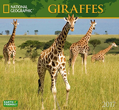 Cal 2017 Giraffes National Geographic