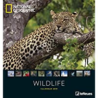 National Geographic Wildlife 2019: Fotokalender