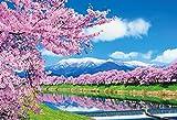 1000ピース ジグソーパズル 一目千本桜(49x72cm)