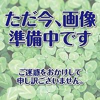 ごぼう 種 【滝野川大長】 小袋(約10ml)