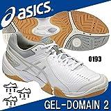 asics(アシックス)【THH538】GEL-DOMAIN 2 ゲルドメイン2 ハンドボールシューズ 0193ホワイト0193WHTSLV 26.5