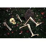 ハロウィン 装飾 飾り ハロウィン デコレーション /グッズ 這い出てきた骸骨の /グッズ [並行輸入品]