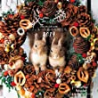 coto coto felt works フェルトの森の仲間たち カレンダー2019 ([カレンダー])