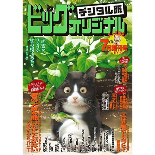 ビッグコミックオリジナル増刊 2017年7月増刊号(2017年6月12日発売) [雑誌]