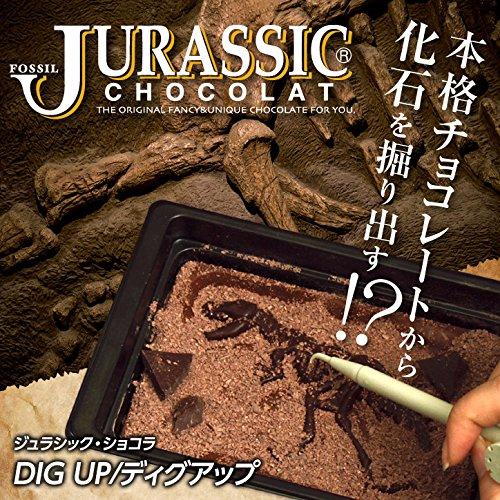 恐竜のチョコレート ジュラシックショコラ ディグアップ セット [恐竜 おもしろチョコレート]