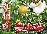 鹿児島県産or九州産 訳あり 豊水梨 約5kg ご家庭用 新高梨・新興梨に切り替わります