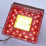 JB 角型LEDテールランプ単体 クリアレンズ LED赤/橙(ウインカー用)