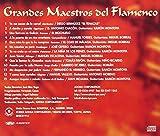 グランデス・マエストロス・デル・フラメンコ 画像
