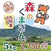 熊本県産 森のくまさん[白米5kg] 九州産の新しいお米[発送時に精米します]【平成23年度産】
