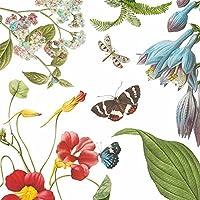 紙製品デザイン1251918飲料/カクテルVictoria Gardenペーパーナプキン( 20パック、マルチカラー