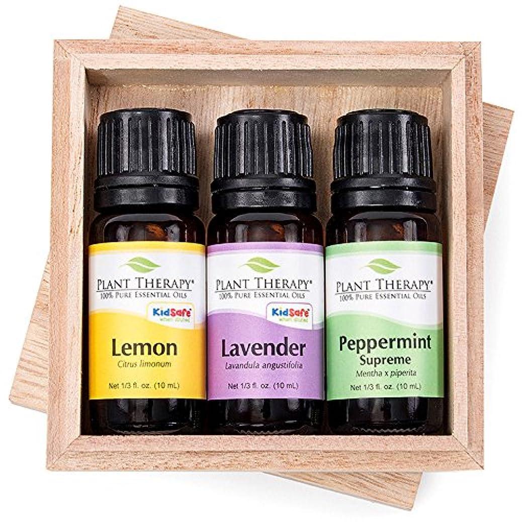 デッキ静けさ抑止するレモン、ラベンダーやペパーミントセット10ミリリットル(1/3オンス)各