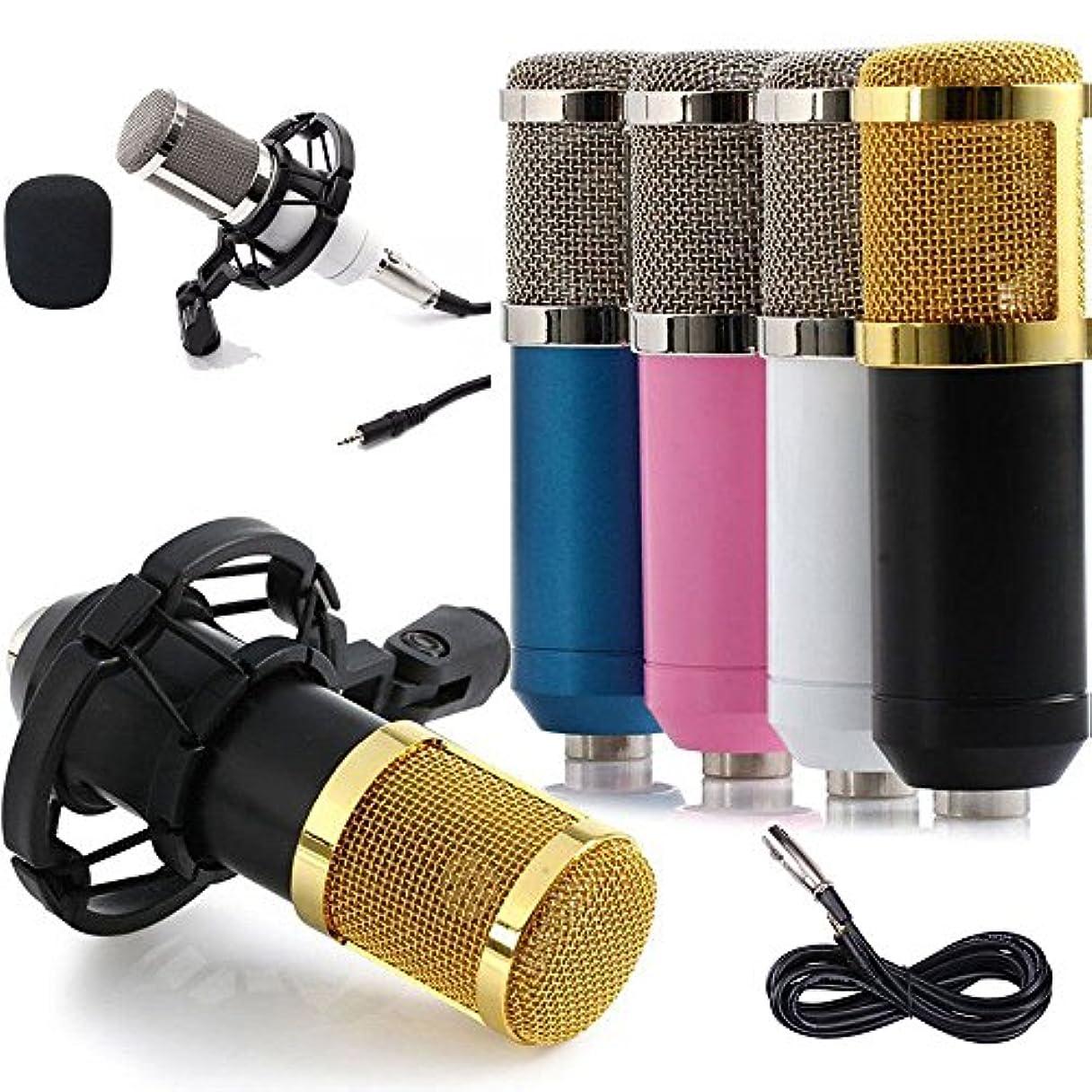 短命発動機怪物FidgetGear Condenser Pro Audio BM800 Microphone Sound Studio Dynamic Mic + Shock Mount US