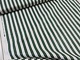 小関鈴子 ストライプ 119グリーン緑 チンツ加工シャーティング生地    |2016新柄|作家|生地|布|  |生地|布地|自然|気象|インテリア|エプロン|小物|カバー|