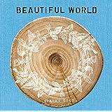 BEAUTIFUL WORLD(初回生産限定盤)(DVD付)