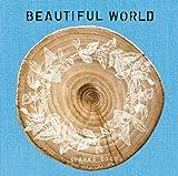 BEAUTIFUL WORLD(初回生産限定盤)(DVD付) 画像