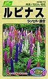 カネコ種苗 草花タネ113 ルピナス ラッセル 混合 10袋セット