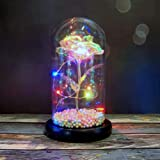 Uonlytech Rose Night Lamp Eternal Flower Statue Lamp with Glass Cover Desktop Decorative Adornment Women Without Battery