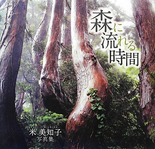 森に流れる時間