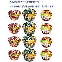 日清食品 どん兵衛 西 チキンラーメン ミニシリーズ3種×4食(12食入り)