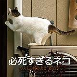 2019必死すぎるネコ カレンダー ([カレンダー])