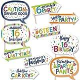 Big Dot of Happiness 面白い 16歳の誕生日 陽気な誕生日 カラフルでスイートな16歳の誕生日パーティー写真ブース小道具キット 10ピース