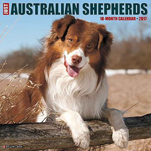 Just Australian Shepherds 2017 Calendar