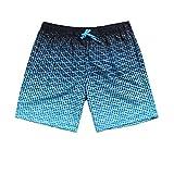 水着 メンズ 半 サーフパンツ 海パン ハーフパンツ ゆったり短パン マリンスポーツ 速乾ショートパンツ ビーチショーツ 人気 夏 ブルー