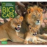 National Geographic Big Cats 2019 Calendar
