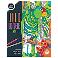 Wild Wonders Colour by Number: Book 4