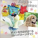 バルーンギフト ペットに贈れる 犬 ネコ 贈り物 バースデイカー お誕生日 バルーン電報 パーティバルーン (ポットの中身:バスグッズ)