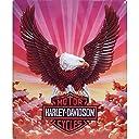 ハーレー ダビッドソン ブリキ看板 メタル プレート Harley Davidson Eagle w/Clouds バイク アメリカン アメリカ 雑貨 ハーレー グッズ インテリア 世田谷ベース
