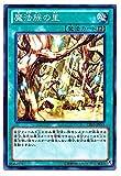 遊戯王 魔法族の里 DE03-JP061 ノーマル ()