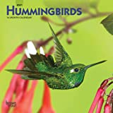 Hummingbirds 2021 7 x 7 Inch Monthly Mini Wall Calendar, Animals Wildlife Birds