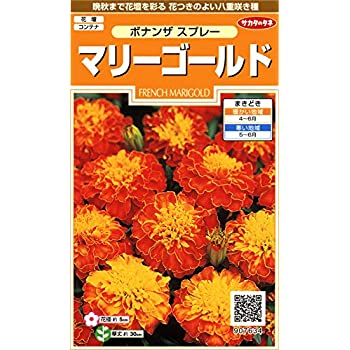 サカタのタネ 実咲花7634 マリーゴールドボナンザ スプレー 00907634 10袋セット