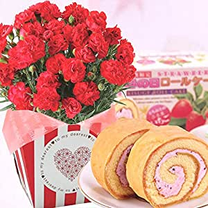 母の日ギフト カーネーション 鉢花 苺のロールケーキセット 花とスイーツ 5号鉢 (赤)