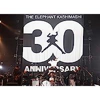 "30th ANNIVERSARY TOUR ""THE FIGHTING MAN"" FINAL さいたまスーパーアリーナ…"