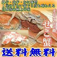 兵庫県浜坂漁港水揚げ せこ蟹 (松葉蟹の雌) 大サイズ 5枚入 ボイル(茹でてお届け)