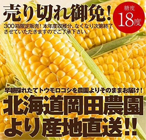 北海道産とうもろこし ゴールドラッシュ(L~2Lサイズ×10本)